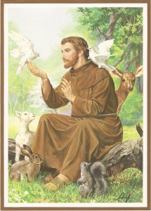 st__francis_of_assisi_by_pikachucutie17-d3hque2